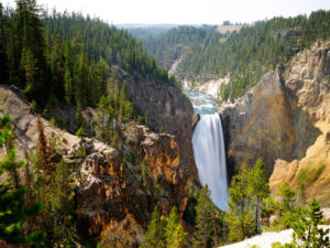 parcul-national-yellowstone